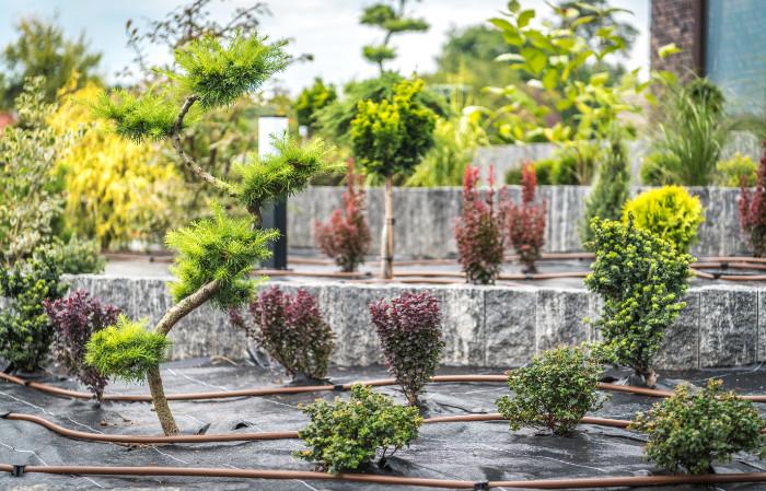 Gartenoase-Planung-Bewaesserung